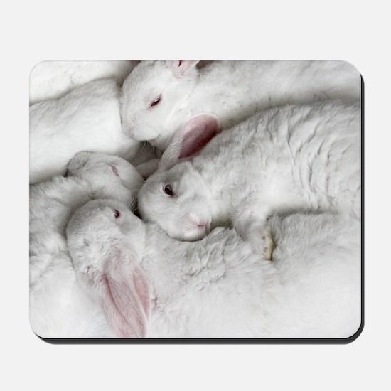 01-January-babies Mousepad