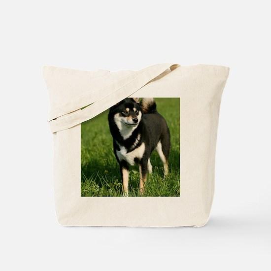 ipad_shiba Tote Bag
