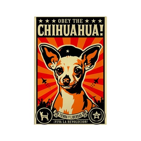 Obey the Chihuahua! Propaganda Magnet