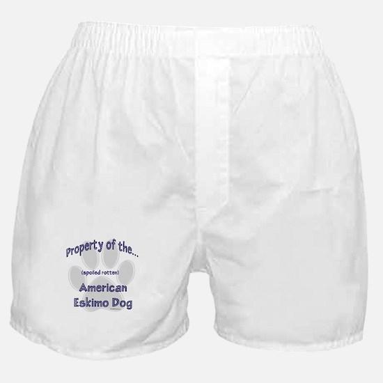 American Eskimo Property Boxer Shorts