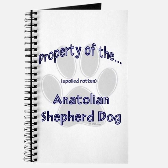 Anatolian Property Journal