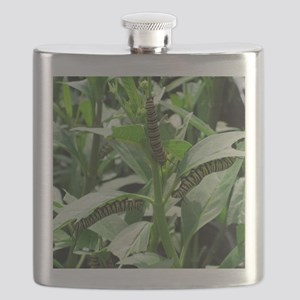 Caterpillars Flask