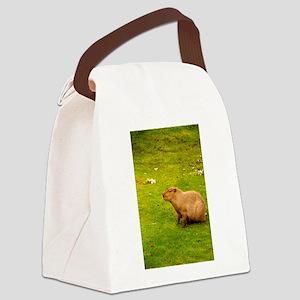 Capybara Canvas Lunch Bag