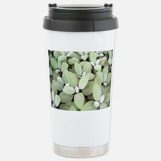 Picture 2250 Stainless Steel Travel Mug