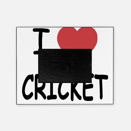 CRICKET Picture Frame