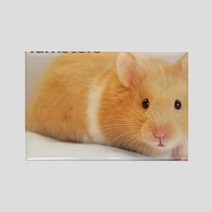 Hamster calendar cover Rectangle Magnet