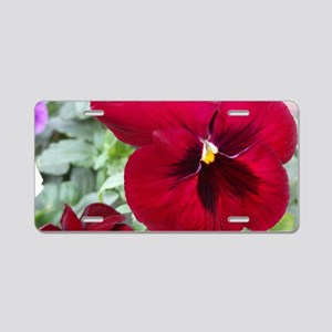 Perfect Red Pansy flower Aluminum License Plate