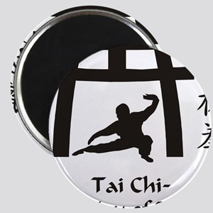 Phil Tai Chi The Way of Balance 2011 (3) Magnet
