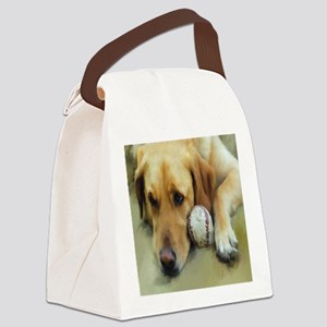 labwithballfinished11by11 Canvas Lunch Bag