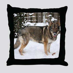 01jan-brickchapel-fina Throw Pillow