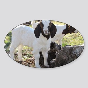Twin goats Sticker (Oval)
