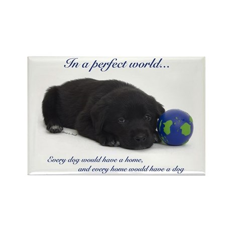 Perfect World (Lab) Rectangle Magnet