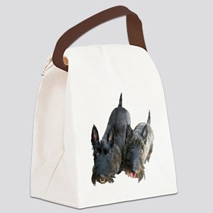 100-4975 Canvas Lunch Bag