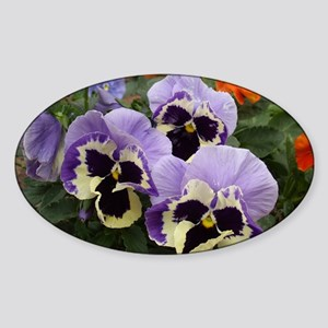 Multi Colored Pansies Sticker (Oval)