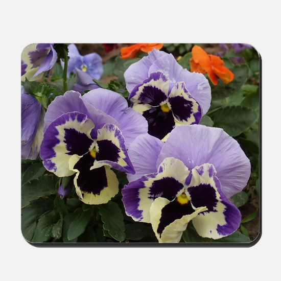 Multi Colored Pansies Mousepad
