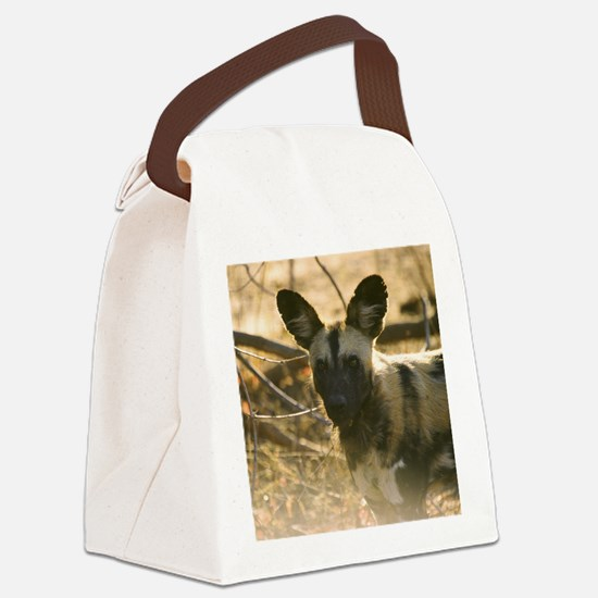 Wild Dog Watching Canvas Lunch Bag