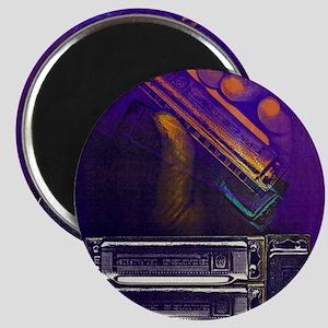 harpbendpuzfin2 Magnet