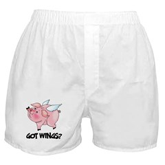 Got Wings? Boxer Shorts