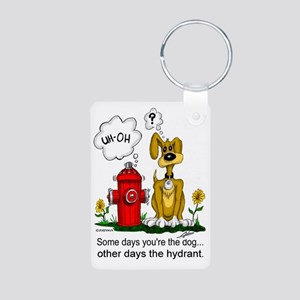 Hydrant Aluminum Photo Keychain