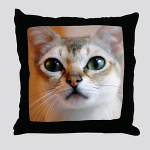 d147mi Throw Pillow
