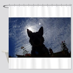 Stealthy Cattle Dog Shower Curtain