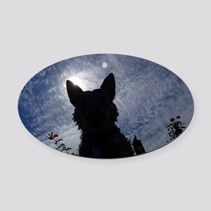 Stealthy Cattle Dog Oval Car Magnet
