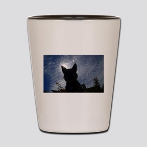 Stealthy Cattle Dog Shot Glass