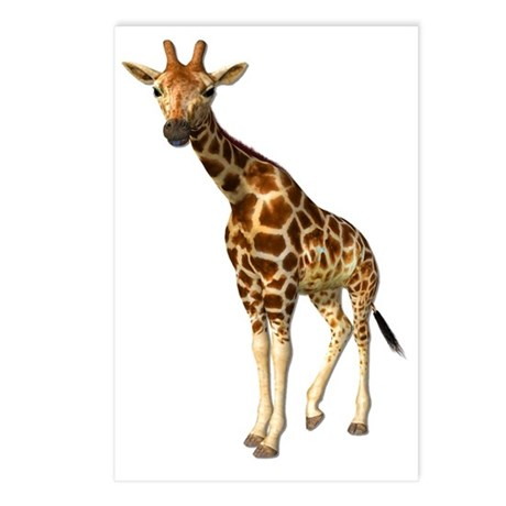Girraffe Postcards (Package of 8)