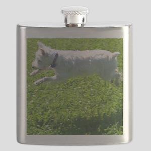 1.IMG_6844 Flask