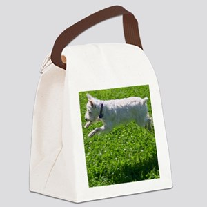 1.IMG_6844 Canvas Lunch Bag
