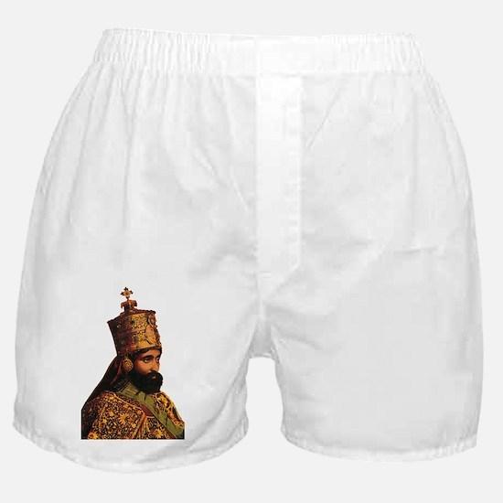 Selassie and Lion pics 013 Boxer Shorts