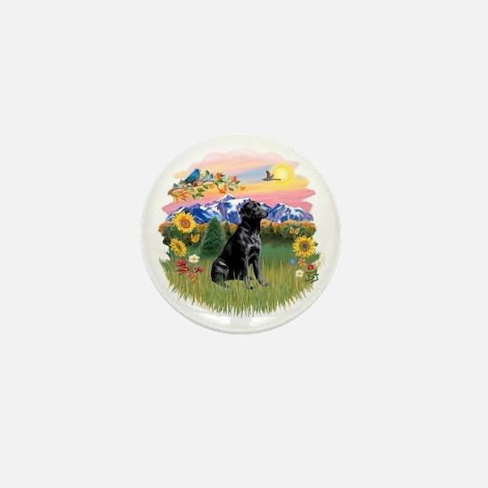 Mt Country - Black Lab Mini Button