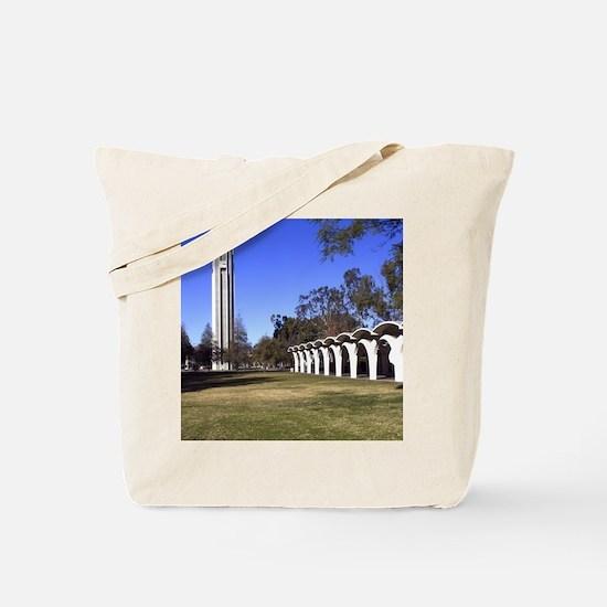 2011c-007r-9x12-P Tote Bag