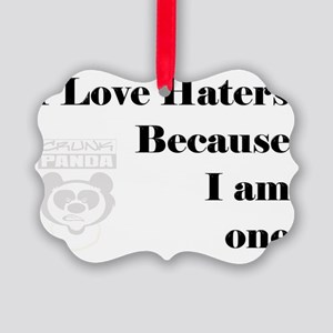 haters Picture Ornament