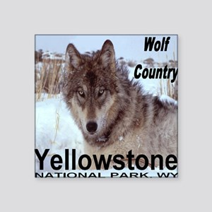 """wolf_country_YNP Square Sticker 3"""" x 3"""""""