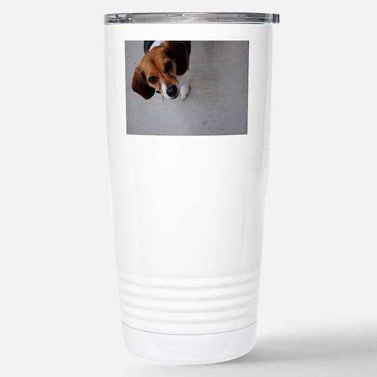 DSC_0048 Stainless Steel Travel Mug