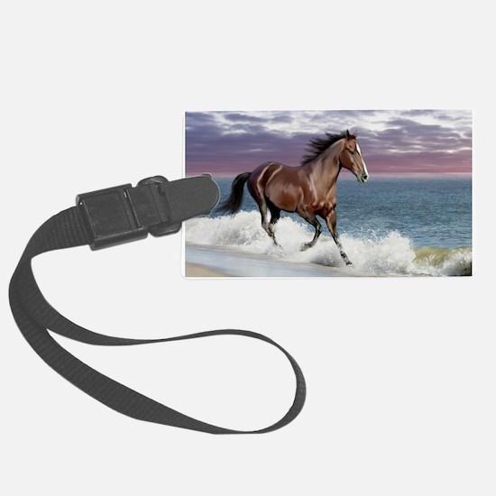 Dreamer_on_beach Luggage Tag