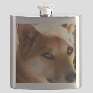 shebapic Flask