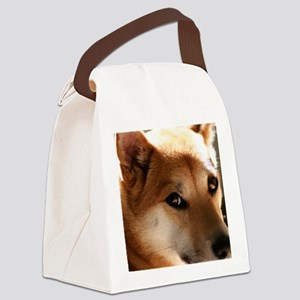 shebapic Canvas Lunch Bag