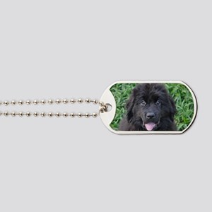 Original Tigger Dog Tags