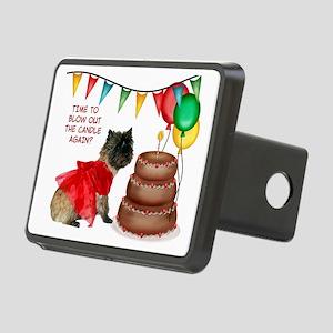 BirthdayCard Rectangular Hitch Cover