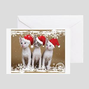 Kittens with Santa Hats Greeting Card