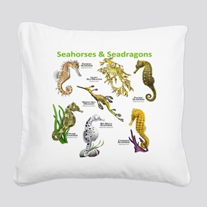 Seahorses Seadragons Square Canvas Pillow