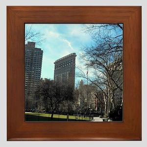100_0417 Framed Tile