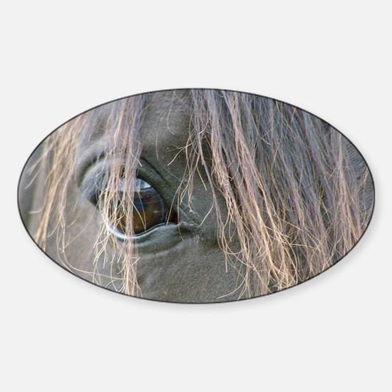 Spiffys eye Sticker (Oval)