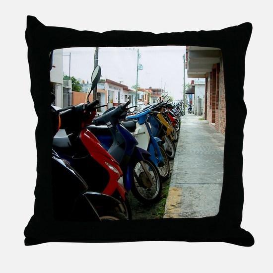 january2012 Throw Pillow