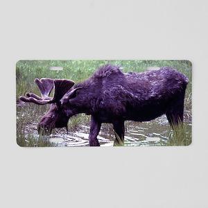 Mister Moose Aluminum License Plate