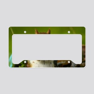 Baby red License Plate Holder