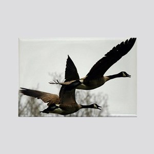 Fly over Geese,Rectangle Magnet