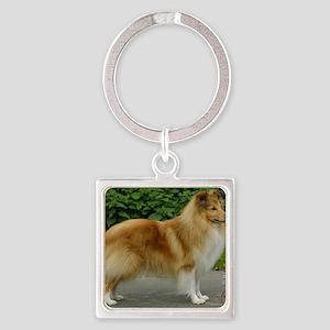 Shetland Sheepdog 9T002D-083 Square Keychain